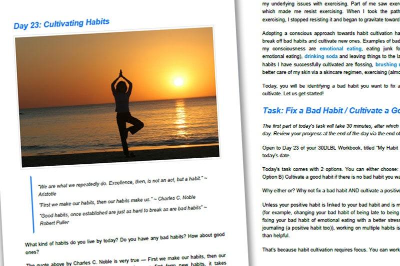 30DLBL Guidebook: Cultivating Habits