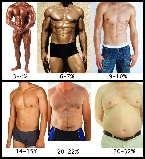 Body fat percentage  for men