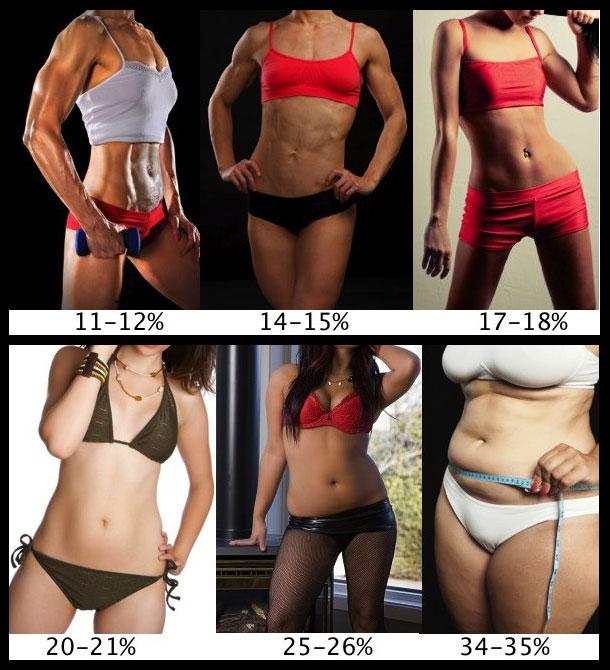Body fat percentage  for women