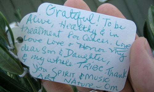 """""""Grateful to be alive, healthy, and in treatment for cancer"""""""