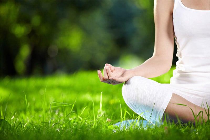 Meditation at the field