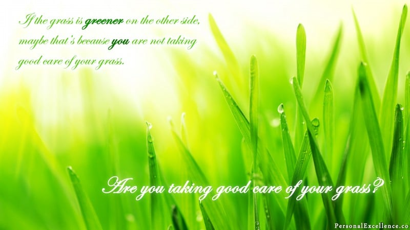 """[How Green is Your Grass?] Wallpaper: """"If the grass is greener on the other side, maybe that's because you're not taking good care of your grass."""""""