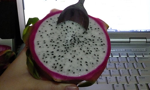 Day 4 Dragon Fruit