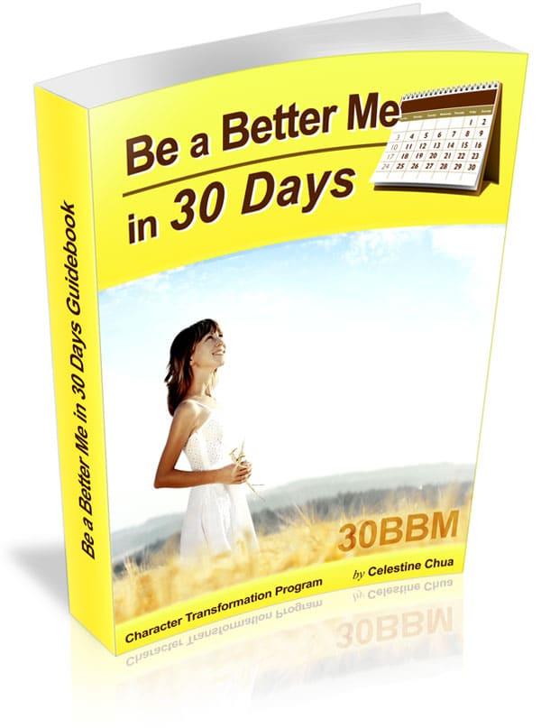 30BBM Guidebook