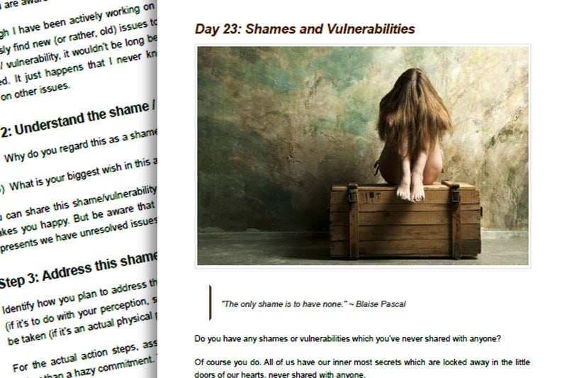 30BBM Guidebook: Shames and Vulnerabilities