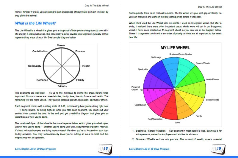 30DLBL Guidebook: The Life Wheel