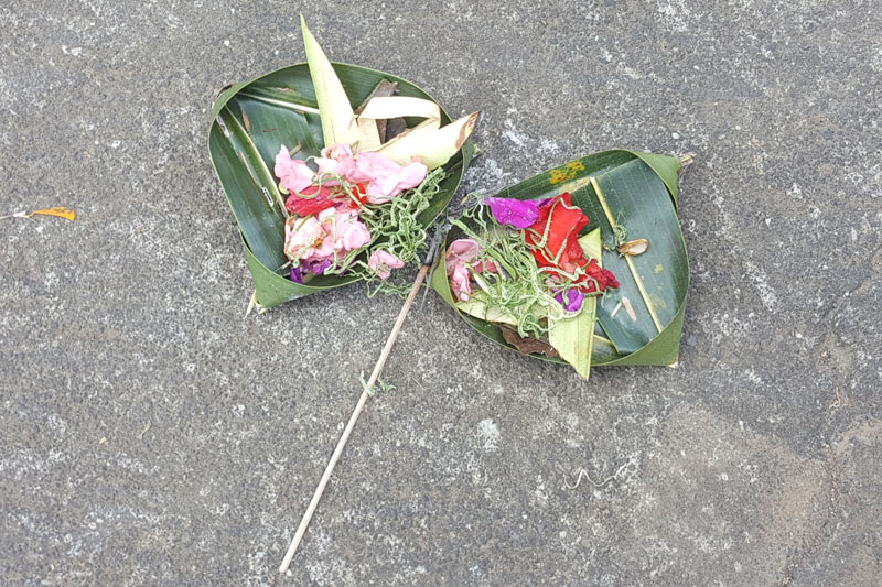 "Ubud: A Balinese offering called ""Canang sari"""