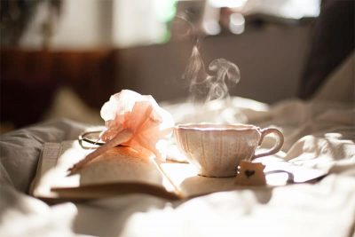 A teacup with a book
