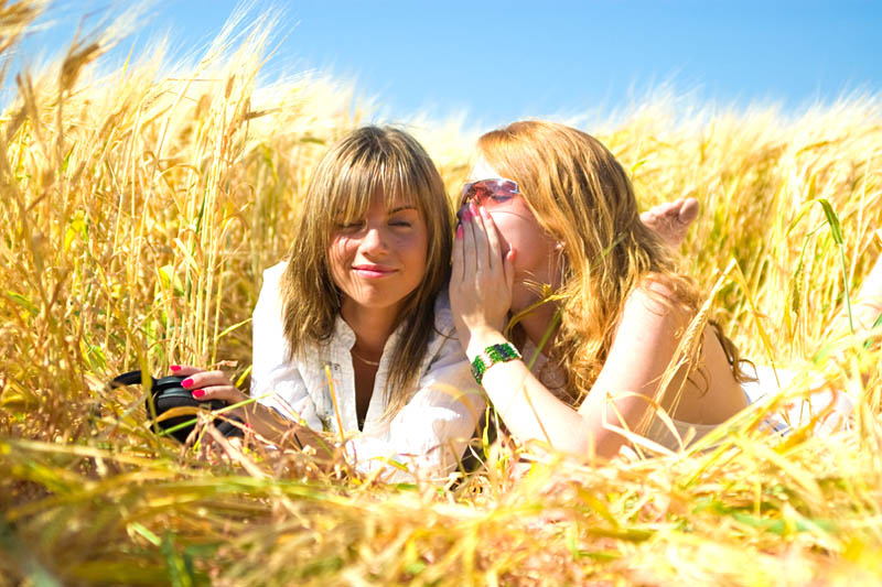 Girls chatting on a wheat field