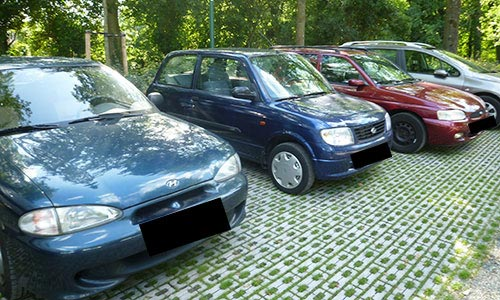 Typical Cars in Holland