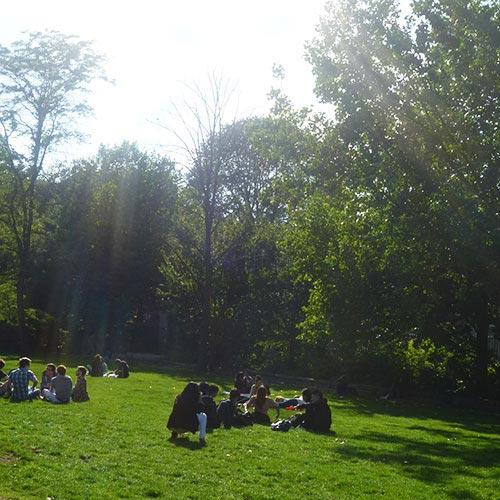 At Vondelpark (in Amsterdam)