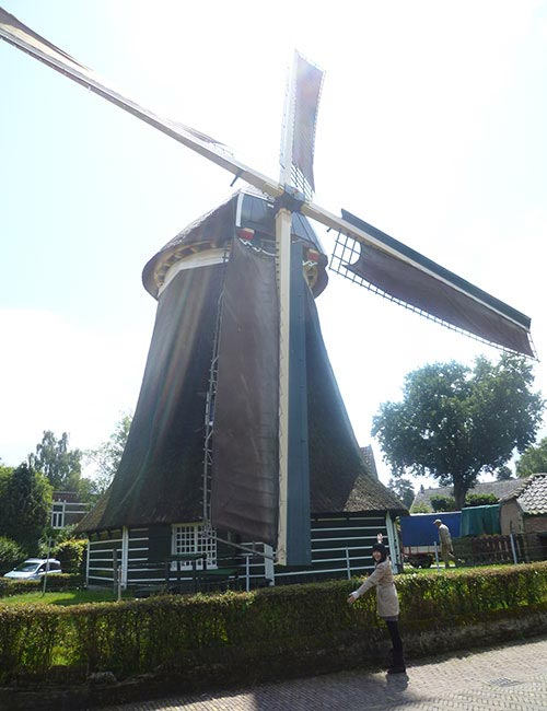 Wind Mill in Laren