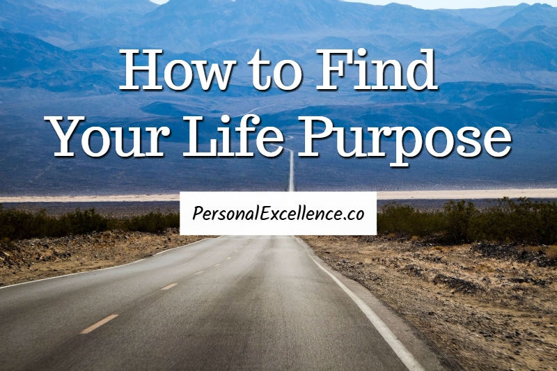 finding the purpose in life The happiness of pursuit: finding the quest that will bring purpose to your life by chris guillebeau american entrepreneur chris guillebeau set out to visit every country on planet earth by the time he turned 35.