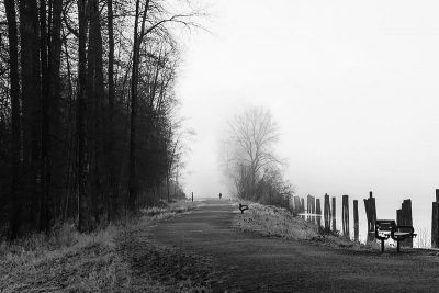 Lonely path