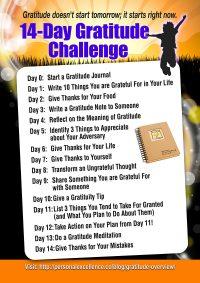 14-Day Gratitude Challenge Manifesto