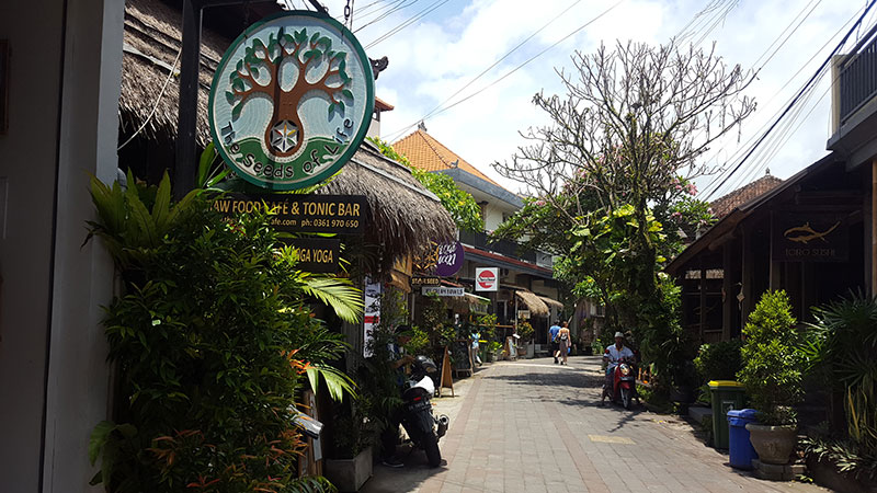 Ubud: Seeds of Life