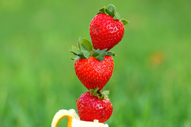 Stacked strawberries